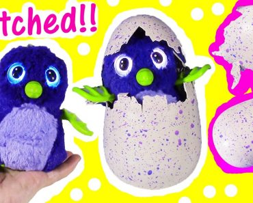Hatchimal The Hottest Toy Of The Year